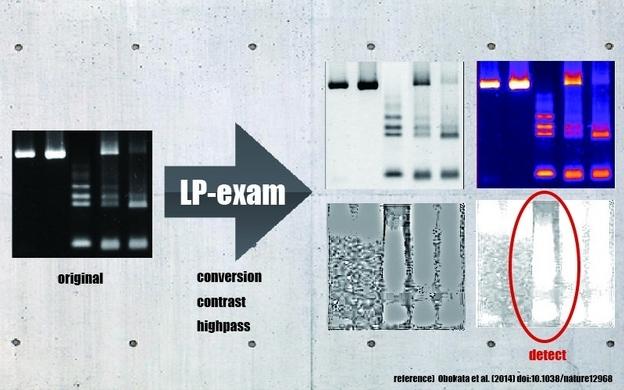 【FIN】LP-exam